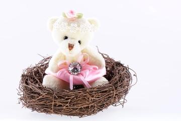 Nest with a Teddy Bear
