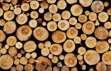 Holzsammlung - Feuerholz