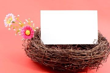 Nest with a blank card