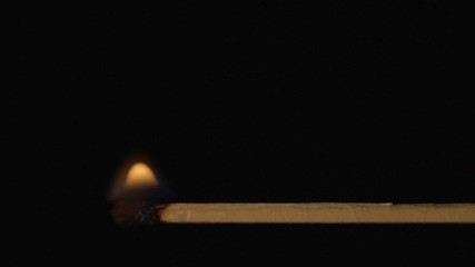 Burning wooden match, fire spreads wood stick with sound