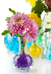 Beautiful flowers in vases with hydrogel close up