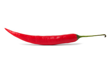 Red hot chili pepper