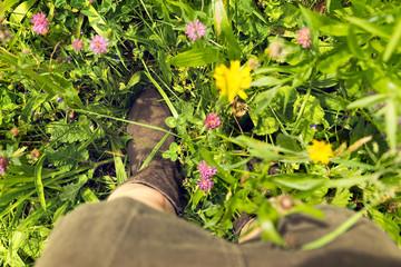 Nahaufnahme Füße in einer bunten Blumenwiese