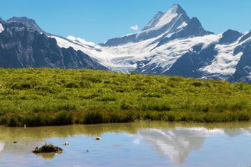 Schreckhorn, Swiss Alps