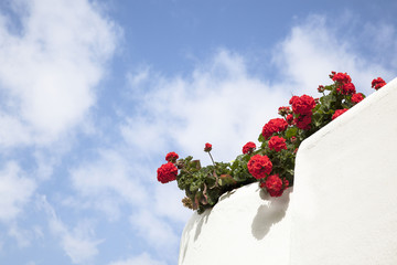 White lime balcony with red geraniums.
