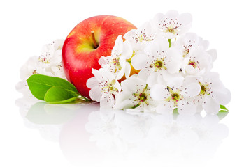 Red apple with leaf and flowers isolated on a white background