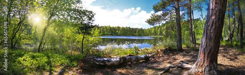 Leinwanddruck Bild Leśna panorama nad brzegiem jeziora