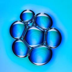 Blaue blasen in einer petrischale geklont