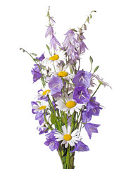 Bouquet of wildflowers isolated on white background