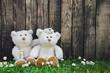 Liebespaar: zwei Teddybären mit Hintergrund zur Hochzeit
