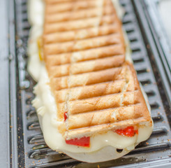 Panini sandwiches italien
