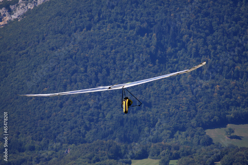 Hang Glider - 65478201