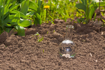 bulb with clear water on dry soil
