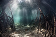 Leinwanddruck Bild - Sunlight in Mangrove Forest