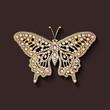 pearl brooch butterfly - 65494236