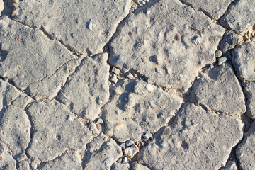 Detailed macro cracked cement road surface