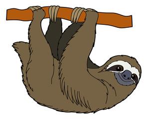 Cartoon animal - sloth - flat coloring style