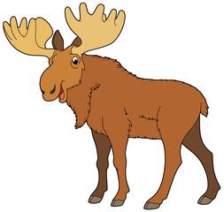 Cartoon animal - moose -  illustration for the children