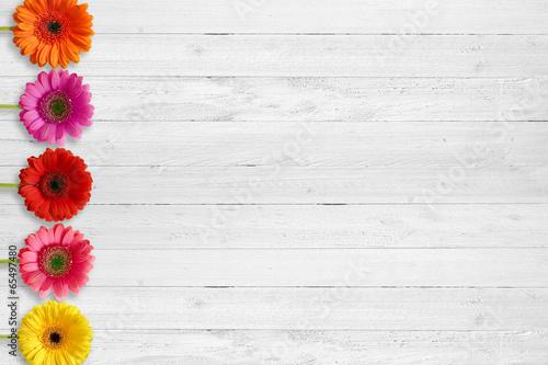 Gerbera auf Holz