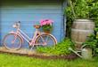 Fröhliches Gartenhäuschen mit Fahrrad - 65497637
