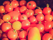 Retro look Tomatoes picture
