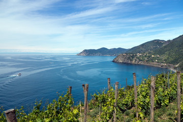 Italian landscape - Cinque Terre, Five Lands. Looking to Cornigl