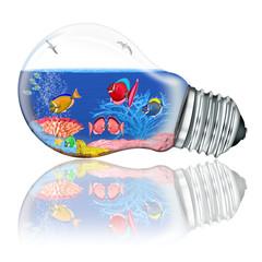 Glühbirne Aquarium mit Korallenfische