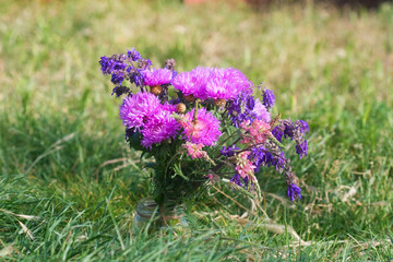 lilac bouquet of wild flowers