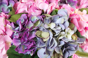 background of artificial hydrangeas
