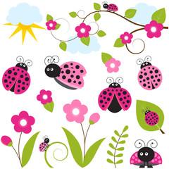 Pink Ladybug Set