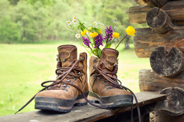 Wanderschuhe mit Blumen, Bergwiese