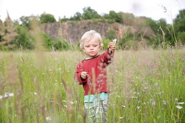 Junge pflückt Blumen