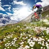 alpi in MTB