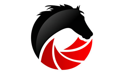 horse-photography-and-video-logo