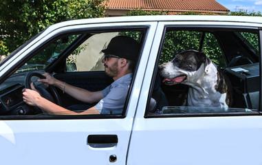 conducteur et son chien