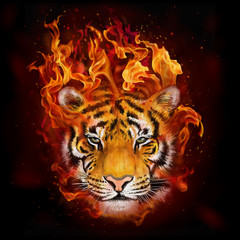 head of a tiger in flames
