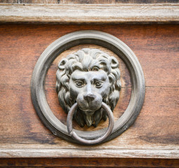 Lion door knocker on wooden door