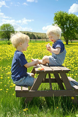 Children Having Fruit Picnic Outside
