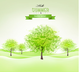 Summer background with green trees. Vector.