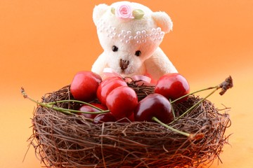 Toy teddy bear collecting Sweet cherries
