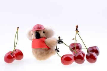 Toy koala collecting Sweet cherries