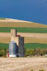 Grain silo and elevator in field