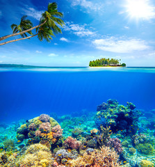 Beautiful Coral Reef on the background of a small island