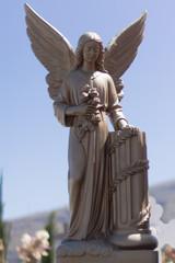 Engel Teneriffa 5