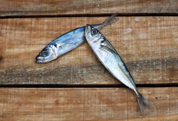 dos peces