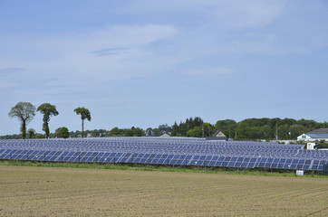 champs solaire