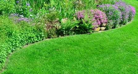 Steinmauer im Garten mit Steingewächs