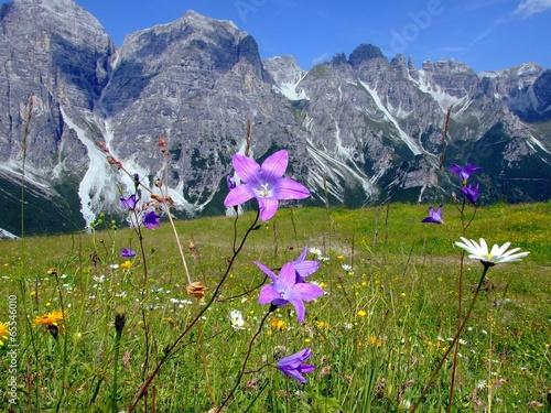 Deurstickers Alpen Schlick2000