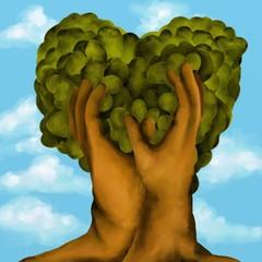 albero a cuore