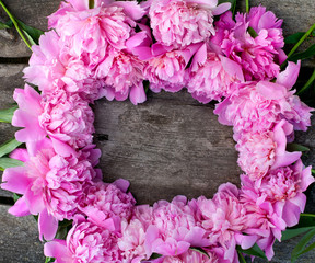 peonies frame on wooden background